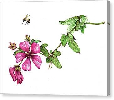 Zoom Canvas Print by Heidi Kriel