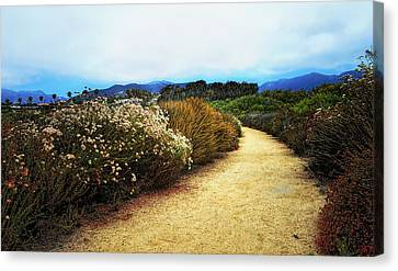 Zuma Beach Pathway Canvas Print by Glenn McCarthy Art and Photography