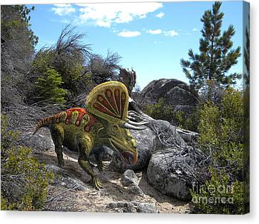 Zuniceratops Among Rocks Canvas Print