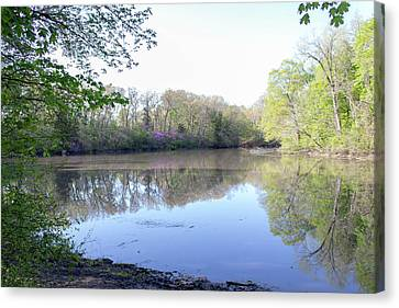 A Lake In The Forest Canvas Print