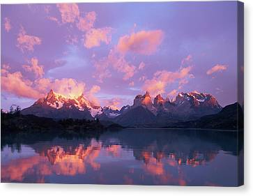 Chile, Patagonia, Torres Del Paine Np Canvas Print