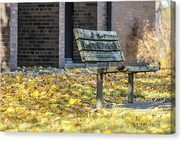 Just A Bench Canvas Print