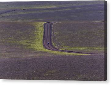 Middle Of Nowhere Canvas Prints Fine Art America