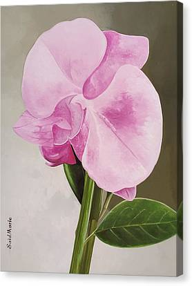 A Beautiful Rose Canvas Print
