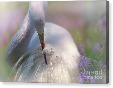 A Zen Moment Fine Art Photography By Mary Lou Chmura Canvas Print