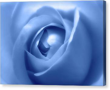 Adorable Soft Blue Rose  Canvas Print
