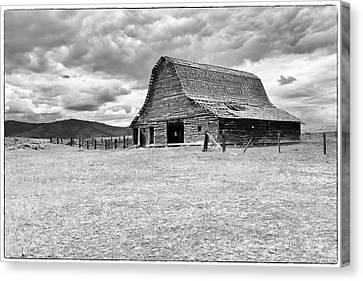 Alone On The Prairie Canvas Print