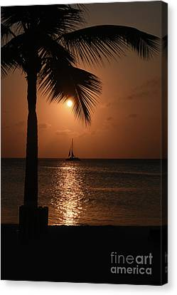 Another Sunset In Aruba Canvas Print