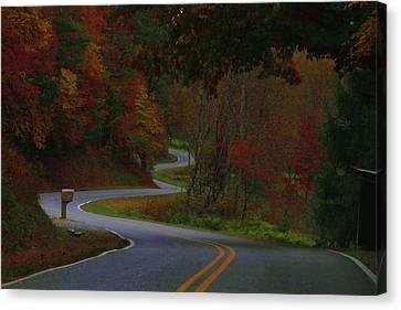Autumn Leaves On Pumpkin Run Rd Canvas Print