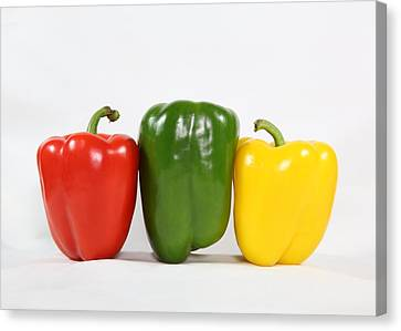 Bell Pepper Support Group Canvas Print