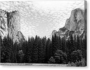 Between A Rock And A Hard Place -- Yosemite Valley In Yosemite National Park, California Canvas Print