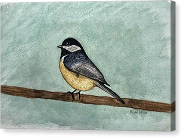 Black Capped Chickadee Canvas Print