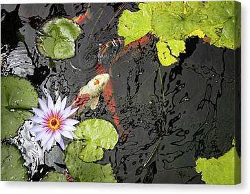 Botanical Koi  Canvas Print
