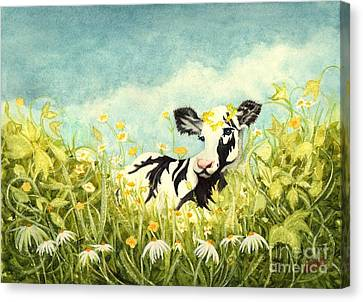 Buttercups And Ivy - Ava The Baby Cow Canvas Print