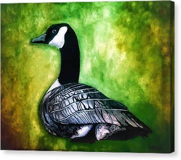 Canada Goose Portrait Canvas Print