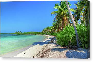 Caribbean Palm Beach Canvas Print