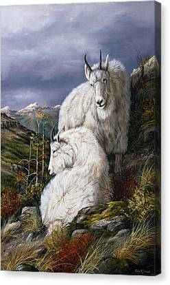 CANVAS Mountain Goat Standing Above Queenstown Art print POSTER