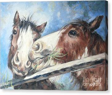 Clydesdale Pair Canvas Print