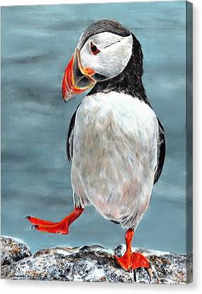 Dancing Puffin Canvas Print