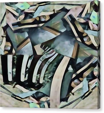 Discombobulated Crap  Canvas Print