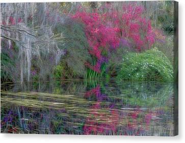 Dream Reflection Canvas Print