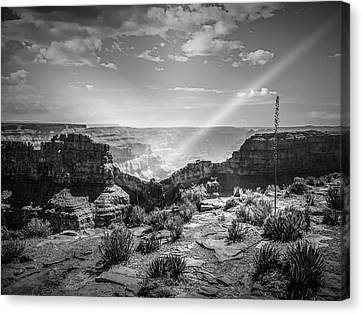 Eagle Rock, Grand Canyon In Black And White Canvas Print