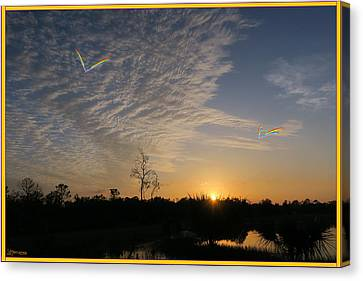 Everglades Dawn Canvas Print