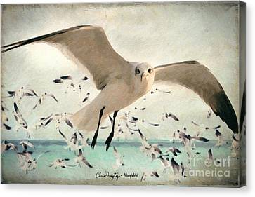 Flight Of The Gulls Canvas Print