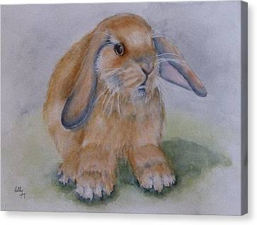 Floppy Ear Bunny Canvas Print