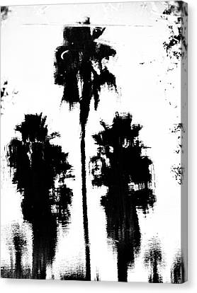 Florida Palm 1 Canvas Print