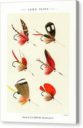 Fly Fishing Lures 10 Canvas Print