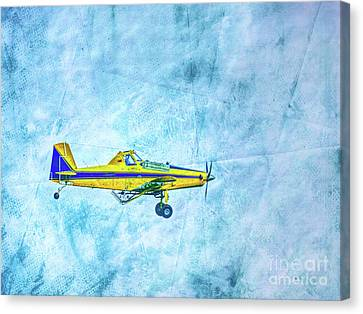 Flying Into The Blue Canvas Print