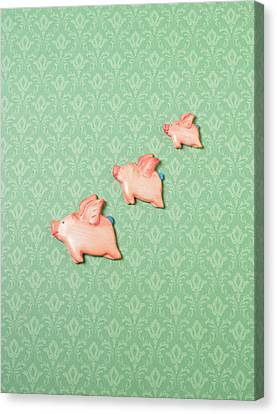 Flying Pig Ornaments On Wallpapered Canvas Print by Peter Dazeley
