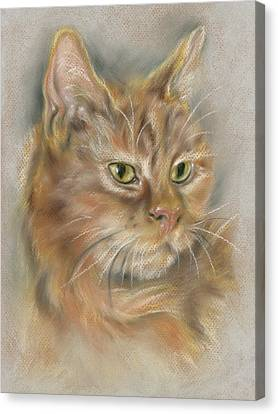 Ginger Tabby Cat With Black And White Whiskers Canvas Print