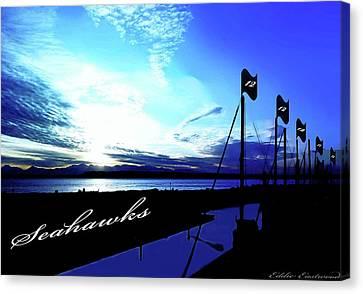 Go Seahawks Canvas Print