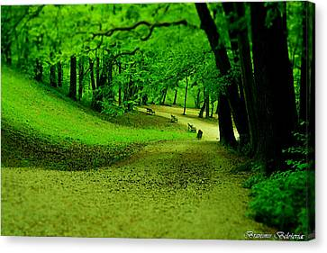 Green Magic Canvas Print