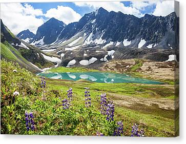 Canvas Print featuring the photograph Grizzly Bear Lake by Tim Newton