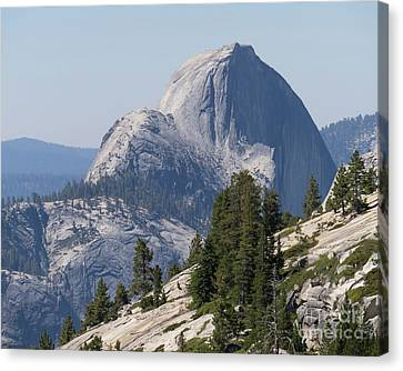Half Dome And Yosemite Valley From Olmsted Point Tioga Pass Yosemite California Dsc04221-2 Canvas Print