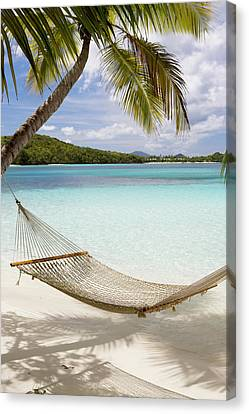 Hammock Hung On Palm Trees On A Canvas Print
