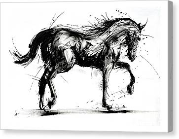 Horse In Motion Canvas Print