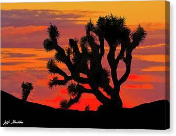 Joshua Tree At Sunset Canvas Print