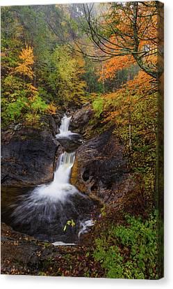 Kent Falls Foliage 2 Canvas Print