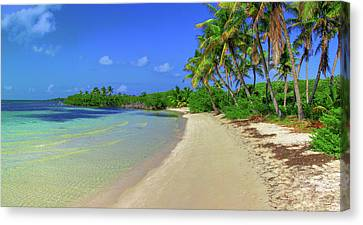 Living On An Island Canvas Print