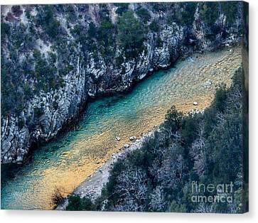 Magic Verdon Canvas Print