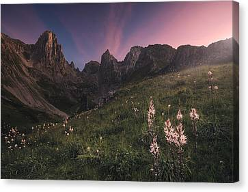 Mountain Meadows Canvas Prints Fine Art America