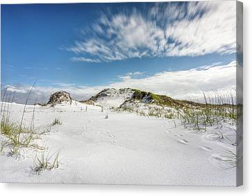Matterhorn Dune On Okaloosa Island Canvas Print