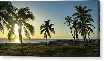 Mexico Palm Tree Sunrise Canvas Print
