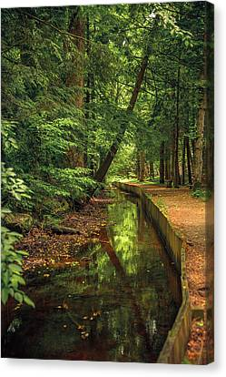 Millrace By John Cable Canvas Print