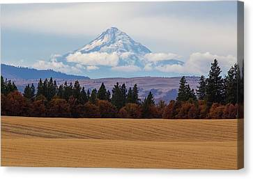 Mount Hood And Layers Canvas Print