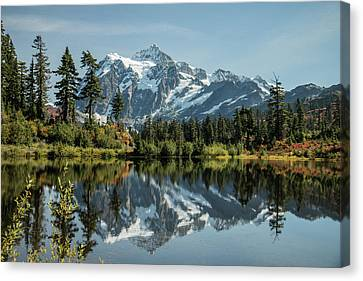 Mt. Shuksan In The Fall Canvas Print